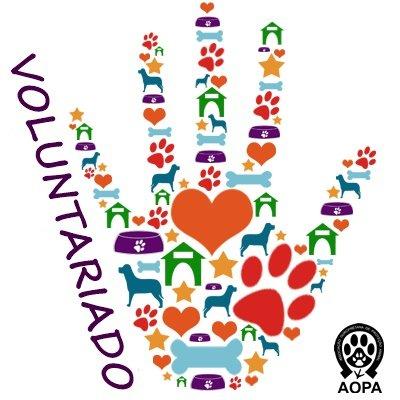 Voluntariado AOPA
